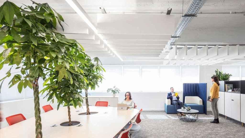 Los modelos híbridos de oficinas son una de las tendencias.