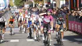 Démare celebra su tercera victoria sobre Sagan