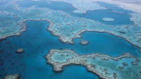 Una imagen de la Gran Barrera de Coral.
