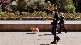 Dos personas caminan por el centro de Madrid este viernes.