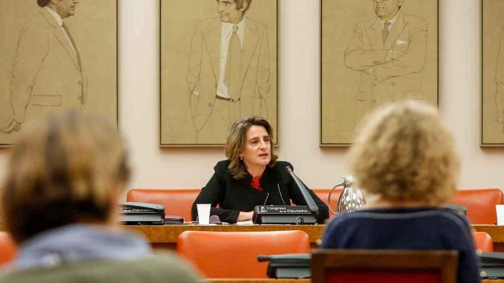 La ministra de Transición Ecológica, Teresa Ribera, en una comparecencia en el Congreso.