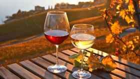 Los mejores vinos para la temporada otoñal.