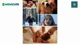 Movicuts, la nueva plataforma para crear videos de calidad cinematográfica en pocos minutos