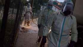 Operarios municipales realizan labores de desinfección en Orense.