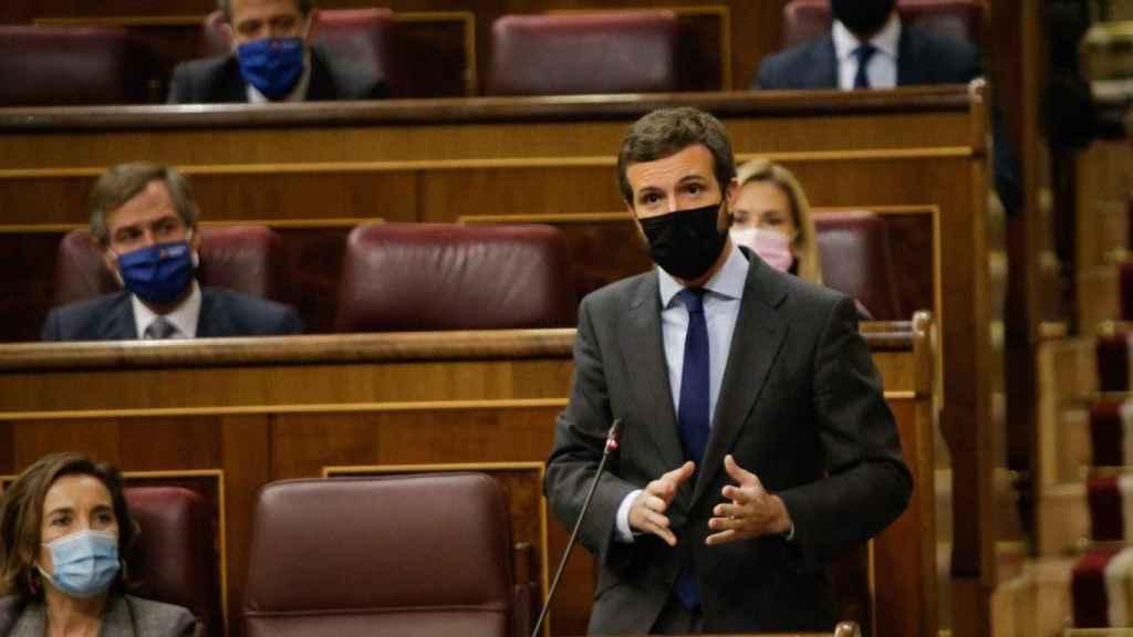 Pablo Casado, presidente del PP, durante una sesión de control al Gobierno.