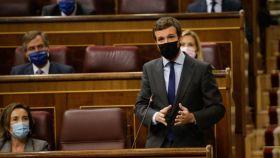 Pablo Casado, presidente del PP, durante la sesión de control al Gobierno.