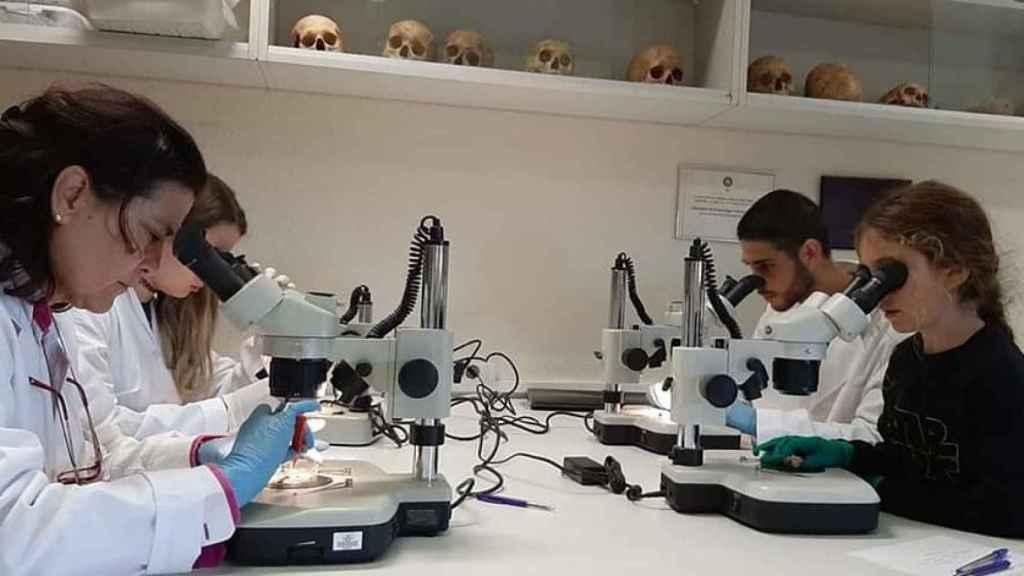 Científicos investigando en España.