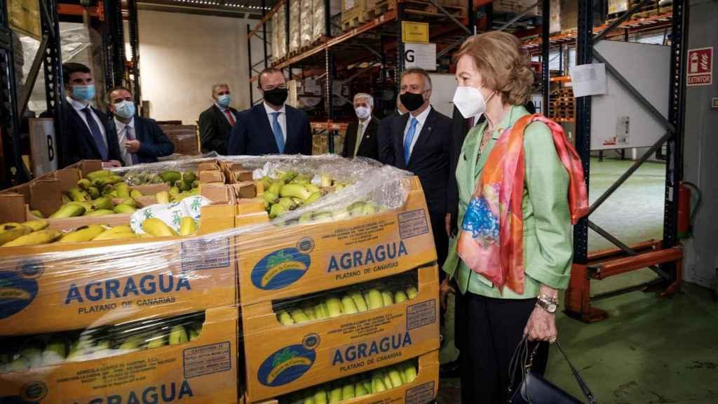 La reina Sofía visitando un banco de alimentos.