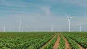 La transparencia en el mercado de las renovables, necesaria para cumplir los objetivos climáticos