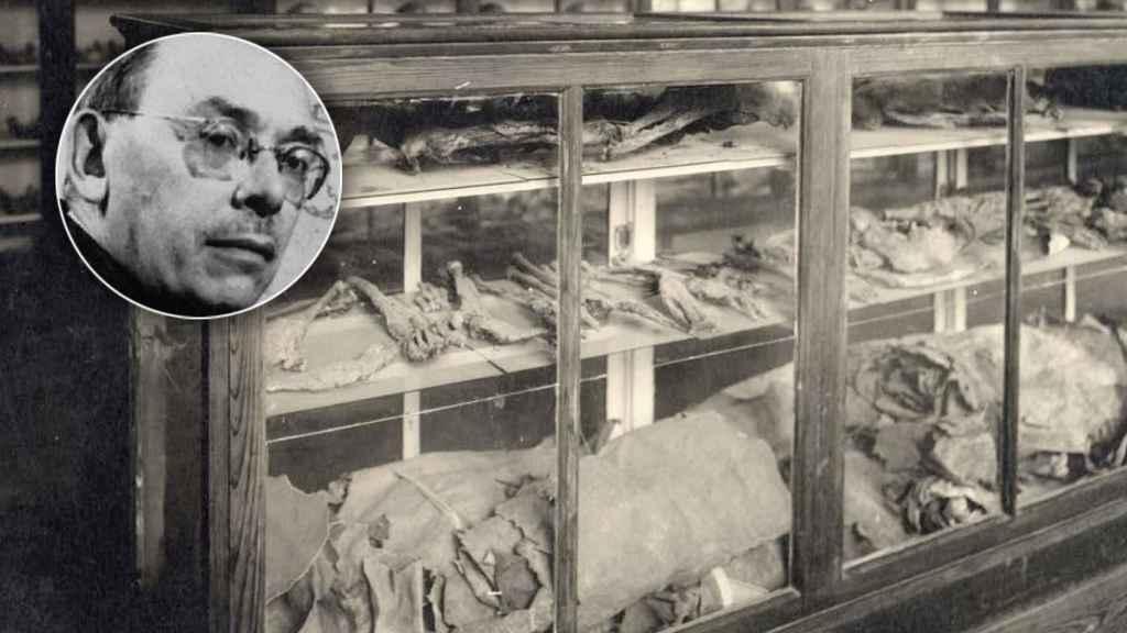 Earnest Hooton y restos de una momia guanche.