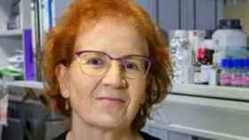 Margarita del Val, viróloga del CSIC