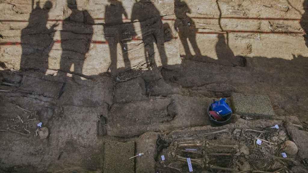 Trabajos de exhumación de la fosa común de Pico Reja, ubicada en el cementerio de San Fernando.