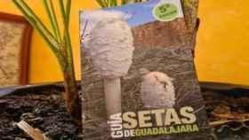 Nueva Guía de las Setas de la Diputación de Guadalajara