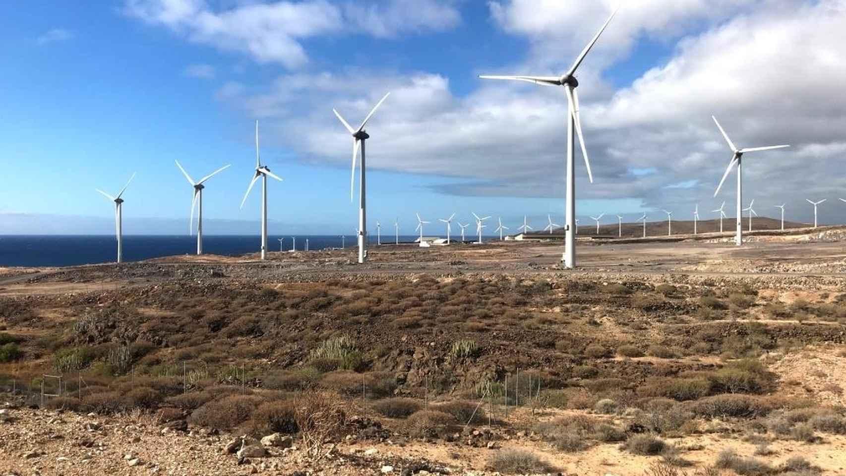 Las subastas renovables en Canarias se convocarán en diciembre para 140 MW