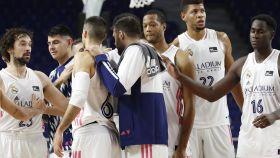 Los jugadores del Real Madrid de Baloncesto celebran una victoria