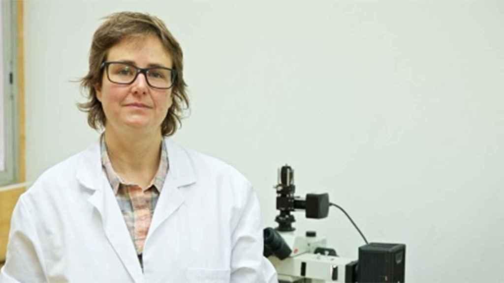 Reyes Calvo lidera el equipo de trabajo de la Universidad de Alicante del proyecto de investigación eProt.