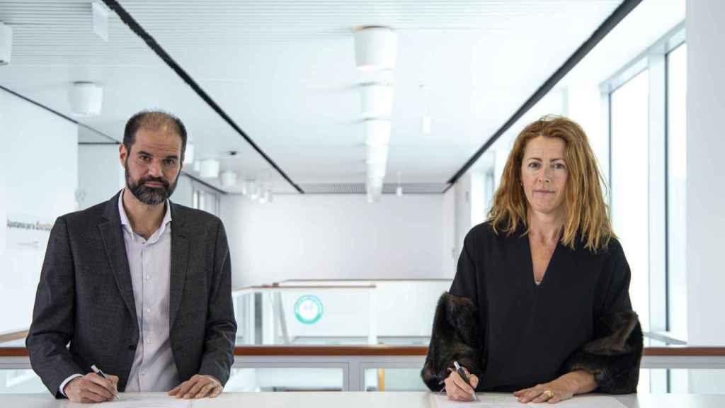 Elewit (REE) e IBM lanzan una solución para gestionar activos de las redes eléctricas