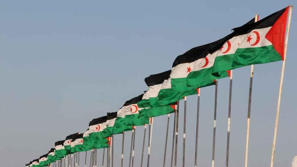 Banderas de la República Árabe Saharaui Democrática.