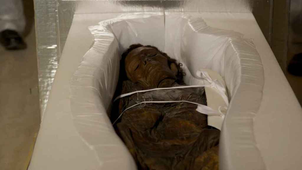 Fase de transporte de la momia guanche del Museo Arqueológico Nacional al Hospital Quirón de Madrid.