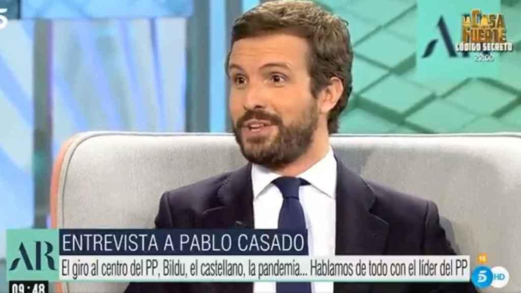 Pablo Casado, presidente del PP, en Telecinco.
