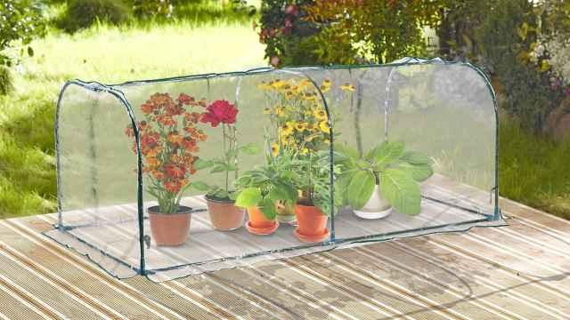 Cubre plantas antiheladas y otros trucos para proteger tu jardín del frío