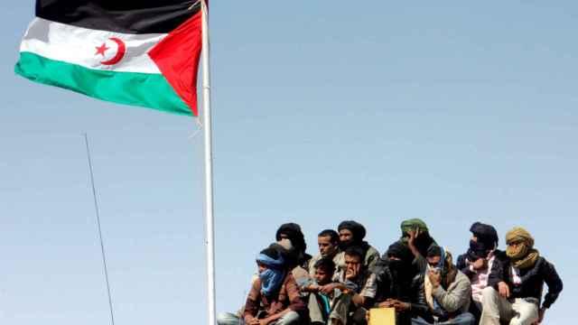 Los soldados sahrawis marchan en un desfile en Tifariti en los territorios liberados del Sahara Occidental.