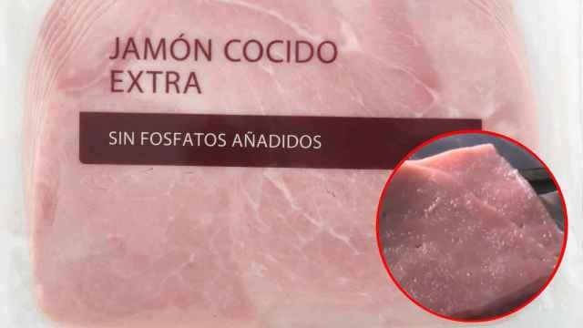 Cultivo de limo en una loncha de jamón cocido en laboratorio. Imagen: Telenueve.