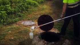 Covid: IA para analizar aguas residuales y predecir el avance de casos