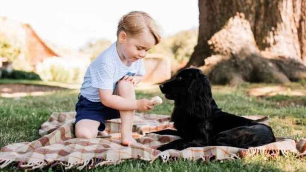 Imagen de George en su tercer cumpleaños con Lupo.