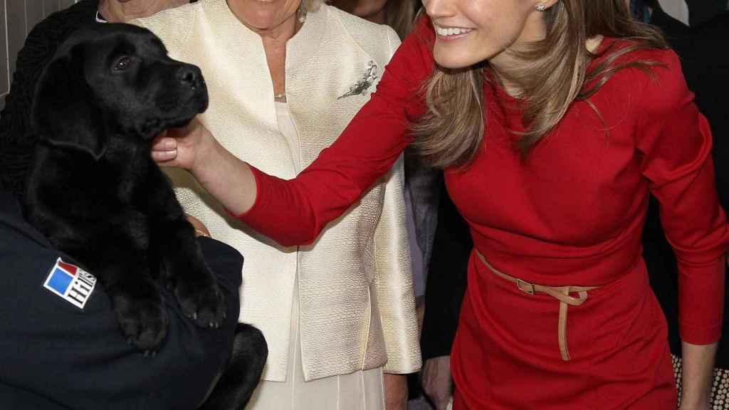 La reina Letizia acariciando a un perro junto a Camilla Parker Bowles y Esperanza Aguirre en un acto público en Madrid en 2011.