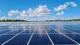 Un parque de placas solares.