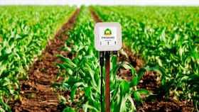 Un sensor inteligente de PRISMAB instalado en un campo.