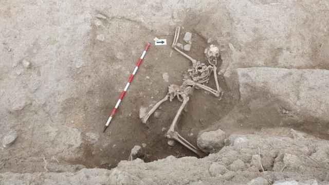 Imagen que muestra el esqueleto hallado cedida por el Ayuntamiento de Guardamar del Segura.