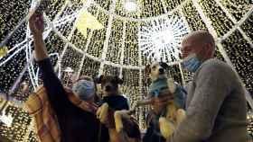 Inauguración de las luces navideñas en la céntrica calle Larios de Málaga.