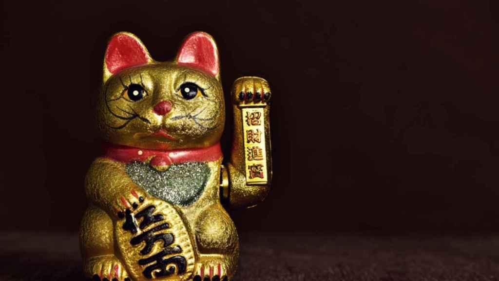 El gato es un amuleto de la suerte