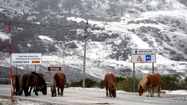 Nieve en la localidad cántabra de Brañavieja. EFE/Pedro Puente Hoyos