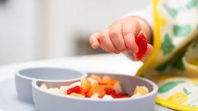 Platos adherentes para bebés, uno de los productos favoritos de padres y madres