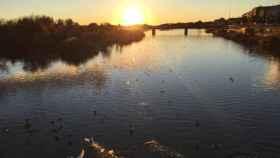 El río Tajo a su paso por Talavera de la Reina. Foto de archivo de E.C.