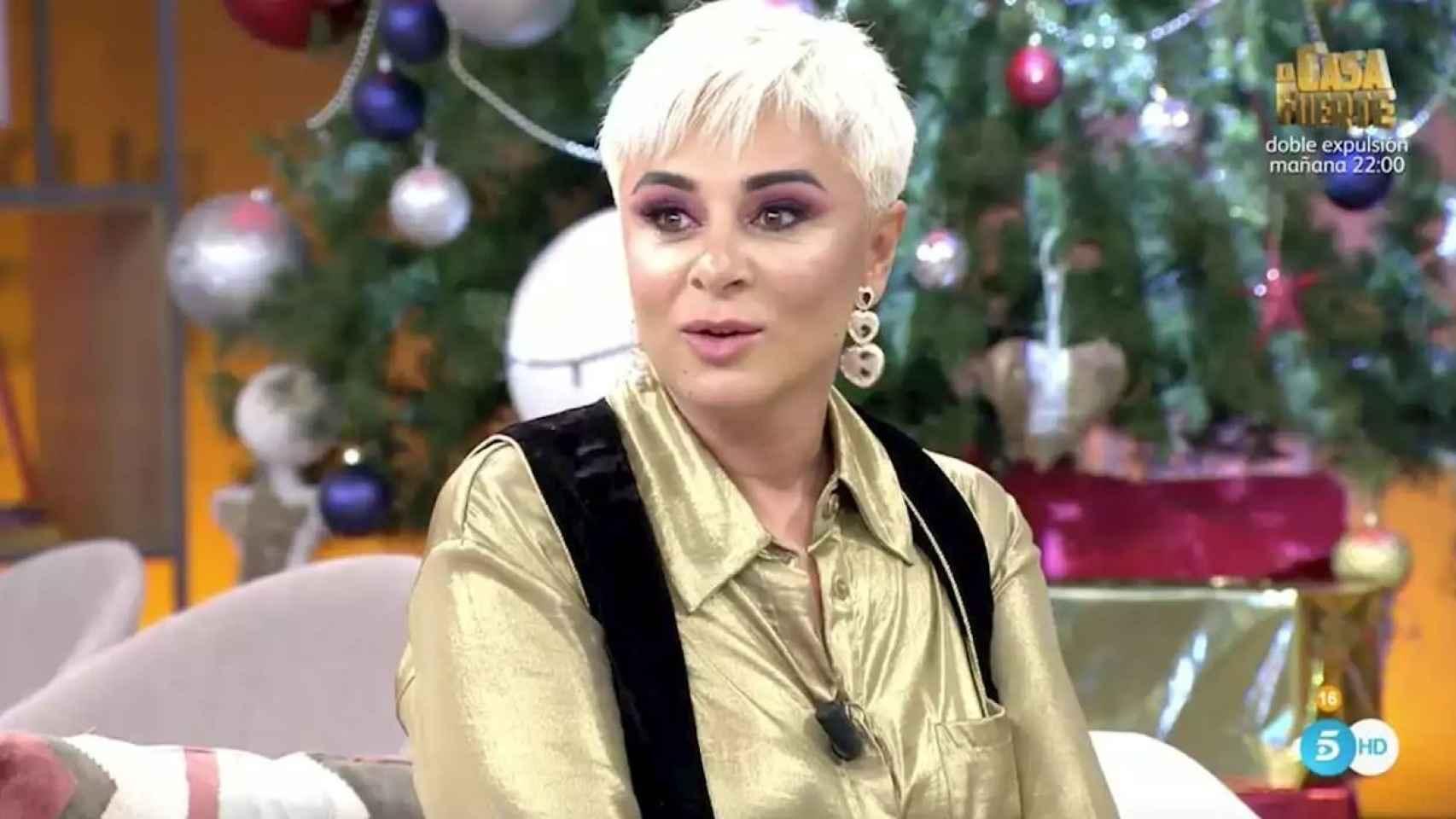 Ana María Aldón durante una de sus colaboraciones en 'Viva la vida'.