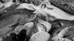 Navidad, oportunidad para apoyar el esfuerzo de los pescadores