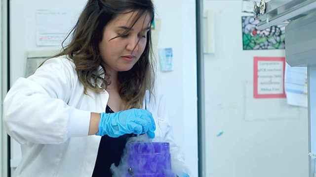 Una técnico trabajando en uno laboratorio de investigación.