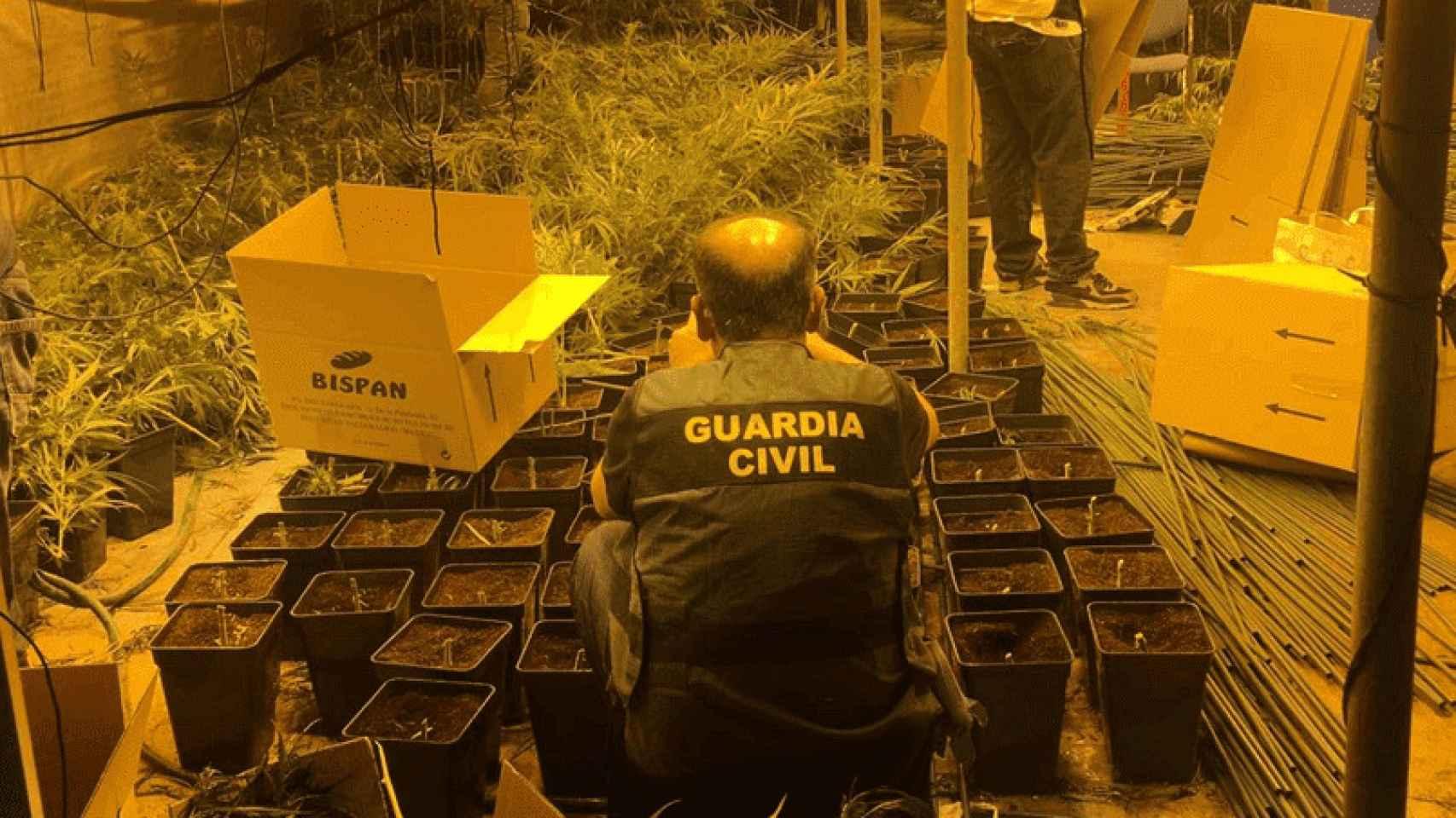Operación antidroga de la Guardia Civil en la Cañada Real.