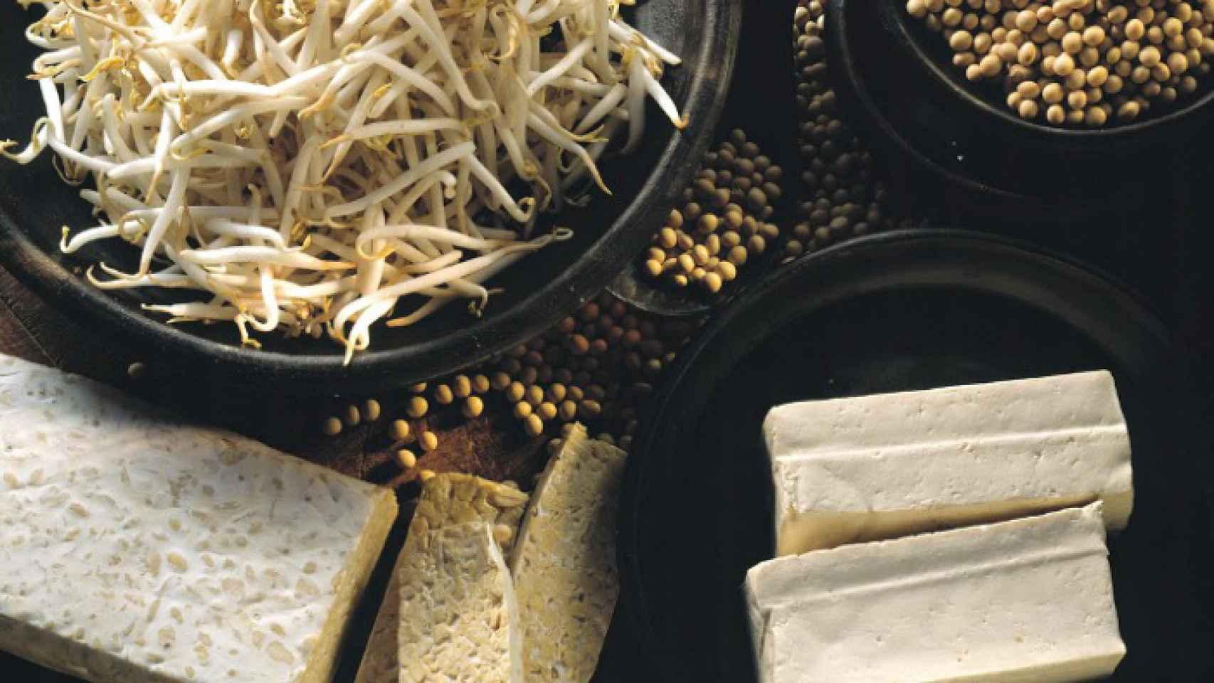 Productos alimentarios elaborados con soja.
