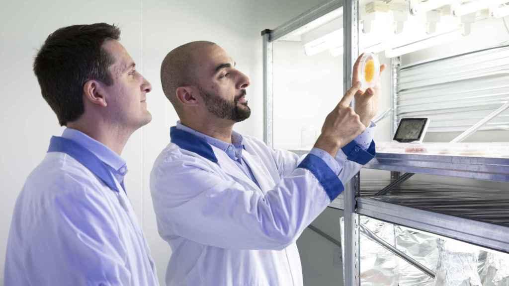 Albert Jané  y Óscar Expósito, fundadores de Vytrus Biotech, una muestra de uno de sus ingredientes activos.