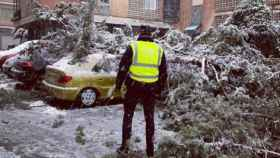 Un agente de la Policía Local de Toledo observa el destrozo de la nieve en la Avenida de la Reconquista de Toledo este viernes