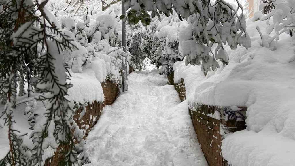 Grosor de la nieve en Madrid.