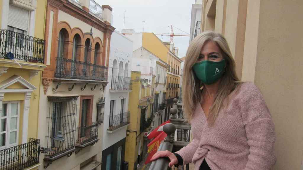 La consejera de Cultura en Andalucía, Patricia del Pozo.