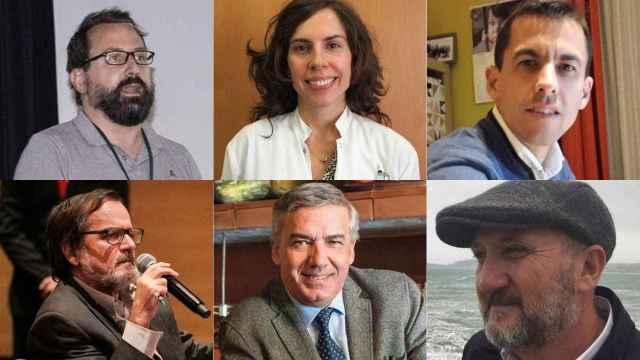 Seis de los epidemiólogos que han participado en la encuesta.