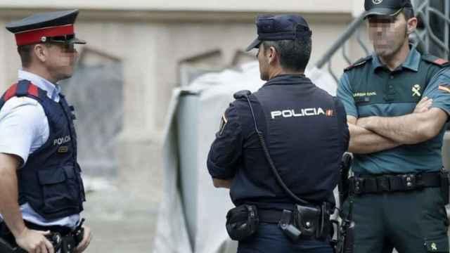 Agentes de la Policía Nacional y Guardia Civil.