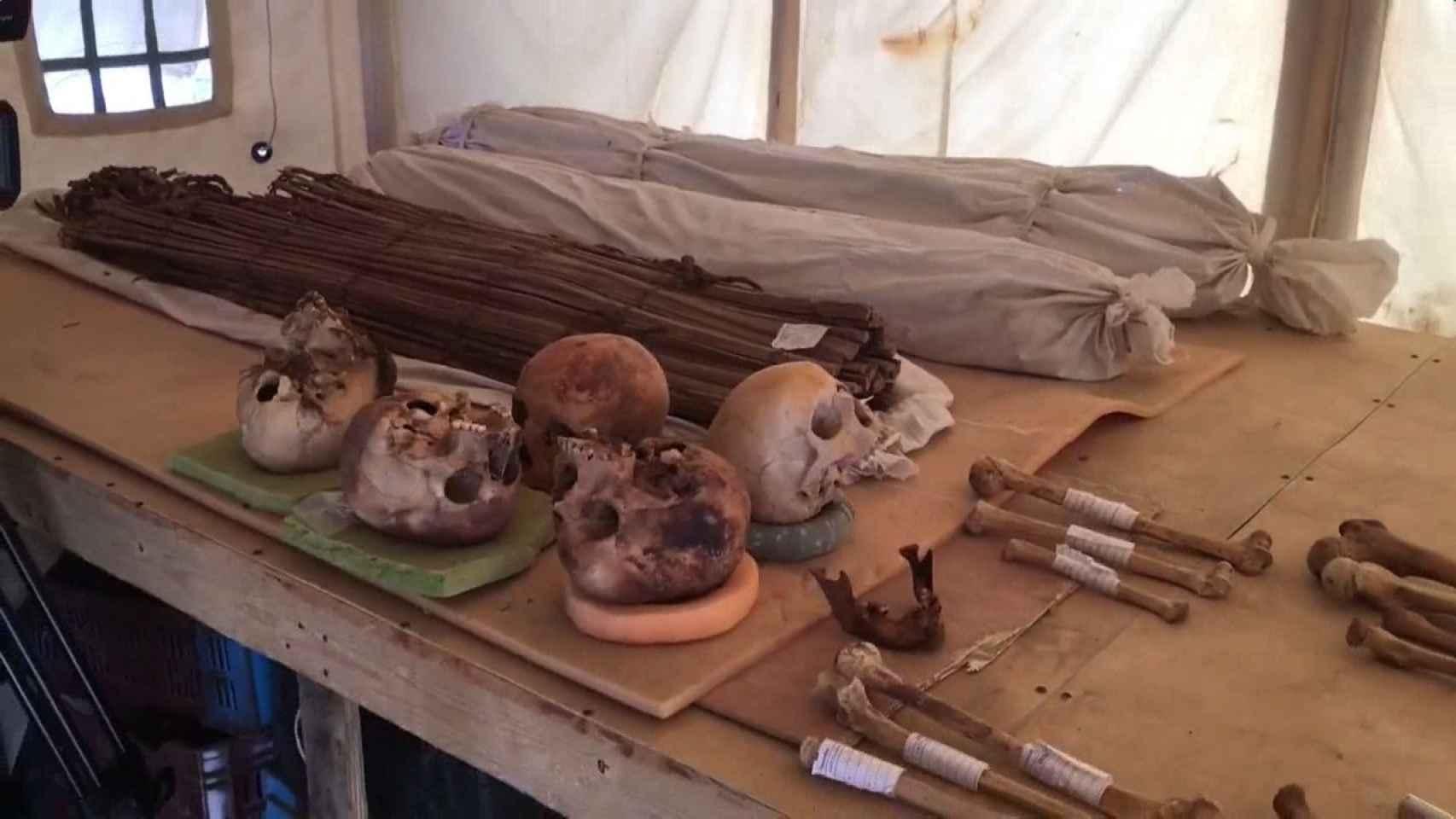 Nuevos hallazgos arqueológicos en Saqqara
